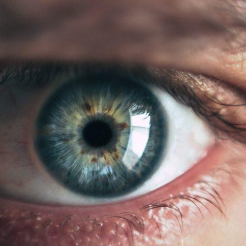 adult-blue-blue-eyes-865711